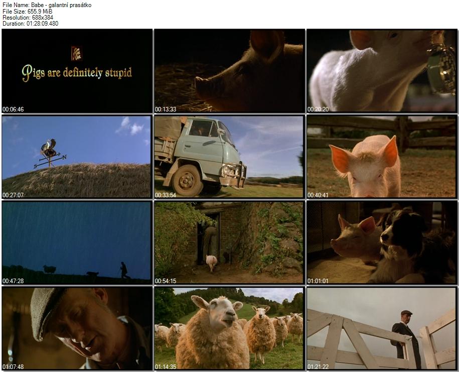 Re: Babe - Galantní prasátko / Babe (1995)
