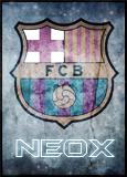 NEOX ZONE Neoxava_0