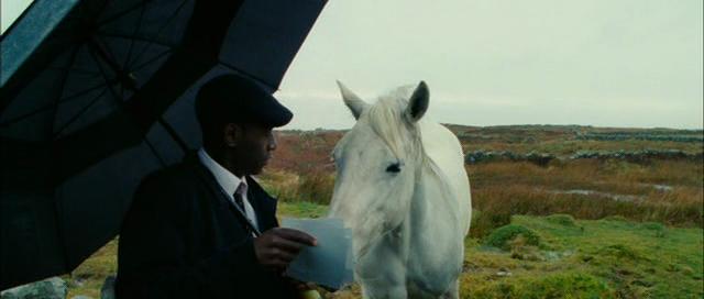 Ochroniarze / The Guard (2011) LiMiTED.DVDRip.XviD-ViP3R
